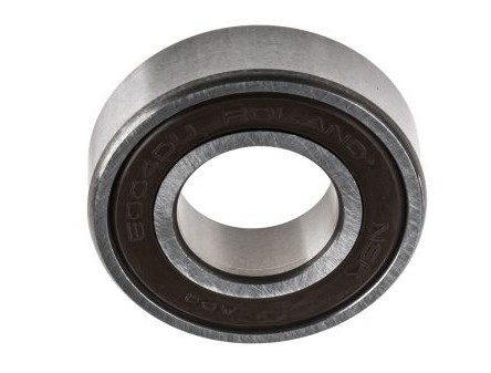 6000 6200 6300 Series Deep Groove Ball Bearing for Motor