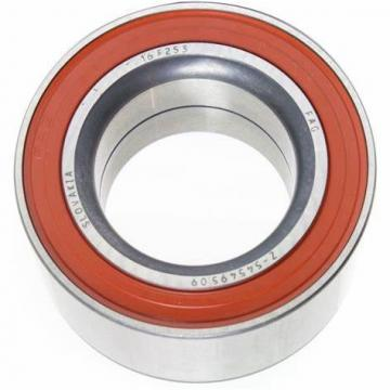Famous SKF Auto Parts 6004 2RS/Zz Deep Groove Ball Bearing