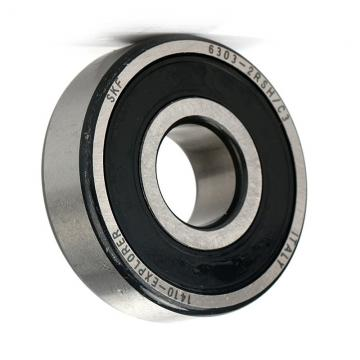 6301,6302,6303,6304,6305-SKF,NSK,NTN Open Plain Zz 2RS Z1V1 Z2V2 Z3V3 High Quality High Speed Deep Groove Ball Bearings Factory,Bearings for Auto Motorcycle,OEM