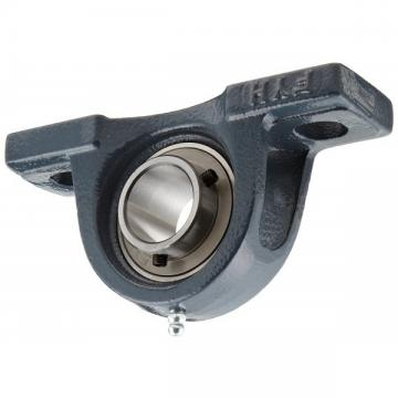 SKF/NTN/NSK/Koyo 6000 6200 Series Auto Accessory Deep Groove Ball Bearings