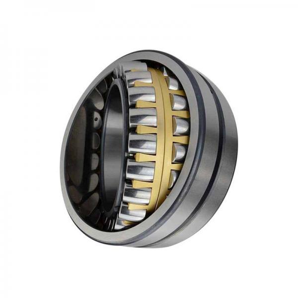 best performance bearing steel P0 rolamentos NSK 6203dw c3 6204 6205 bearing made in Japan #1 image